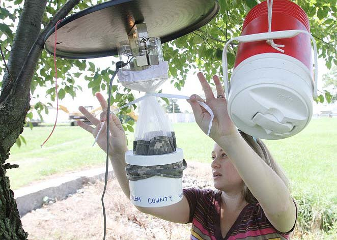 13 Homemade Mosquito Trap Ideas To Get Rid Of Mosquitos The Self