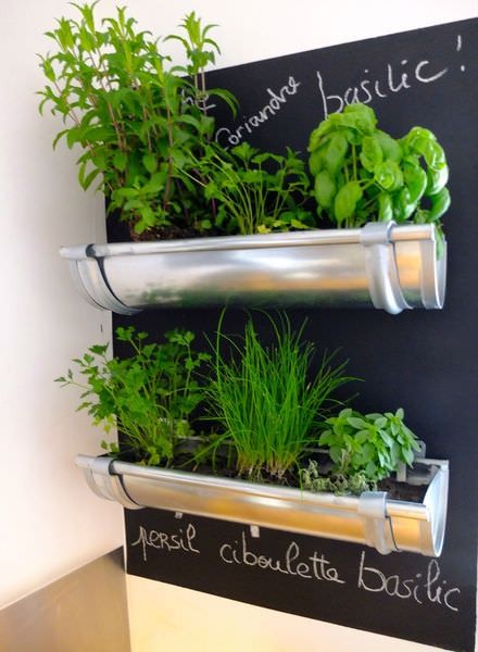 Great Indoor Herb Garden Idea