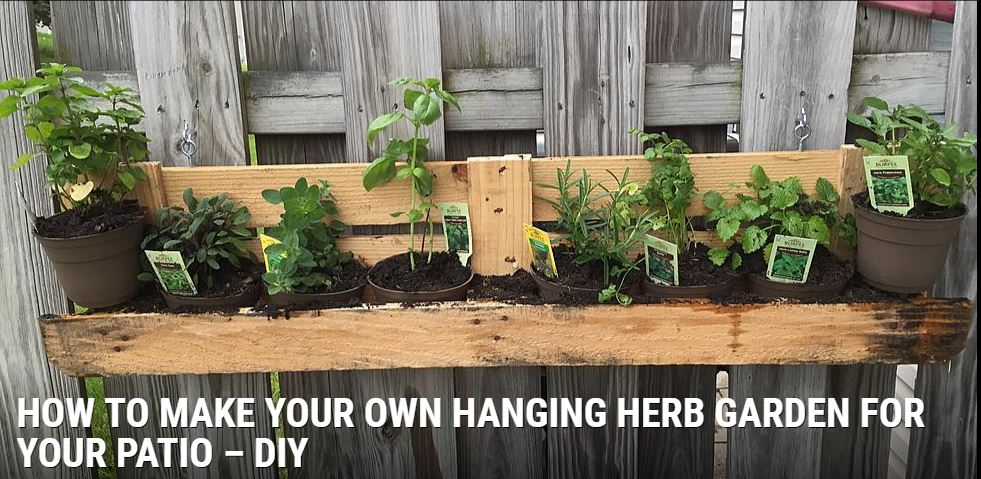 Hanging Herb Garden for Patio