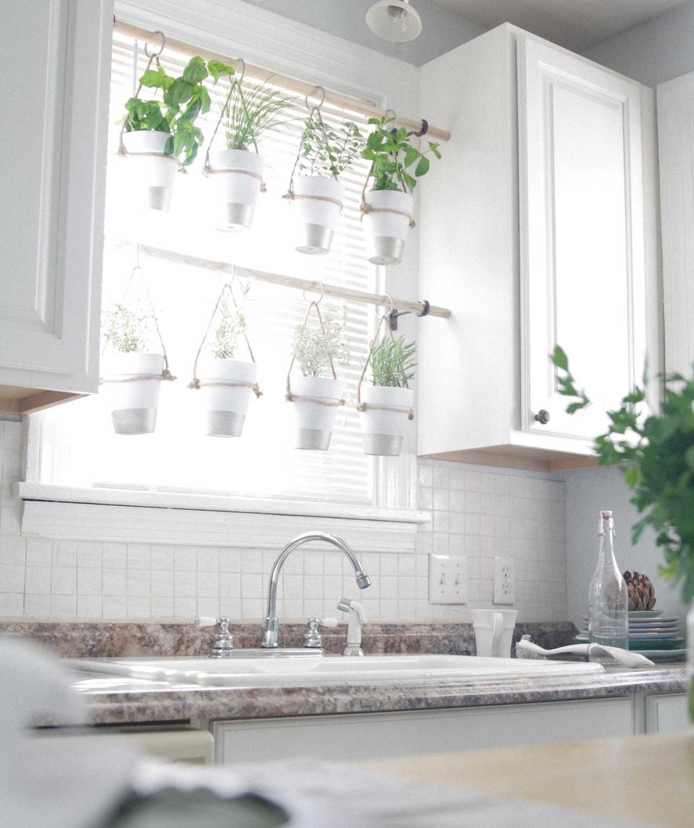 Indoor Hanging Herb Garden