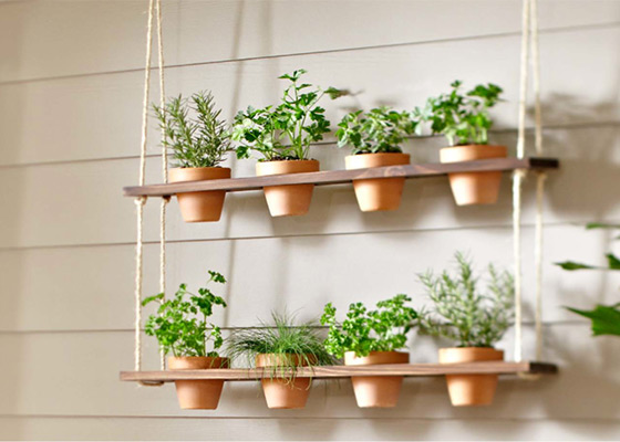 Two steps Hanging Herb planters