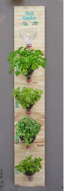 Water Bottle Hanging Herb Garden