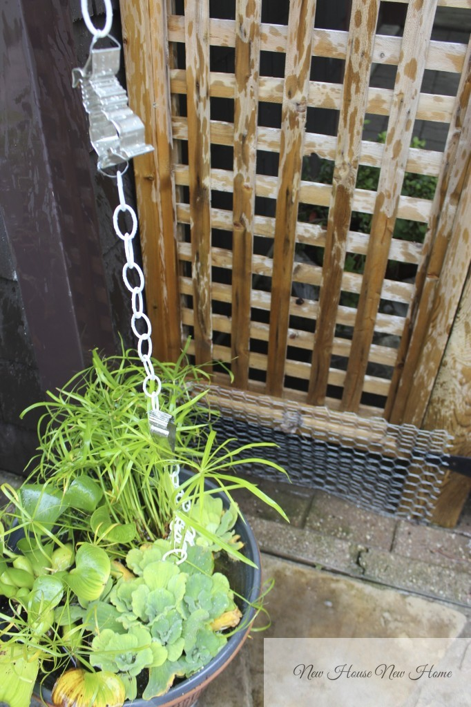 Garden Decor Cookie Cutter Rain Chain