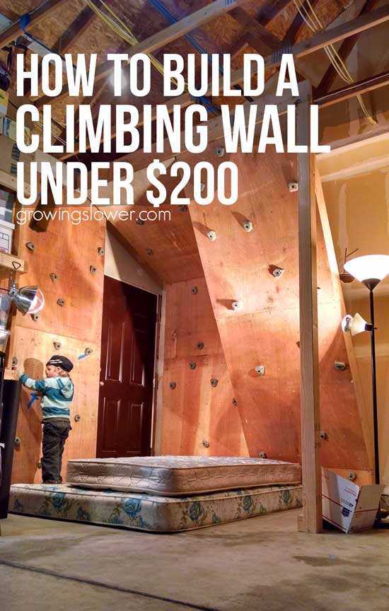 Budget-Friendly DIY Climbing Wall