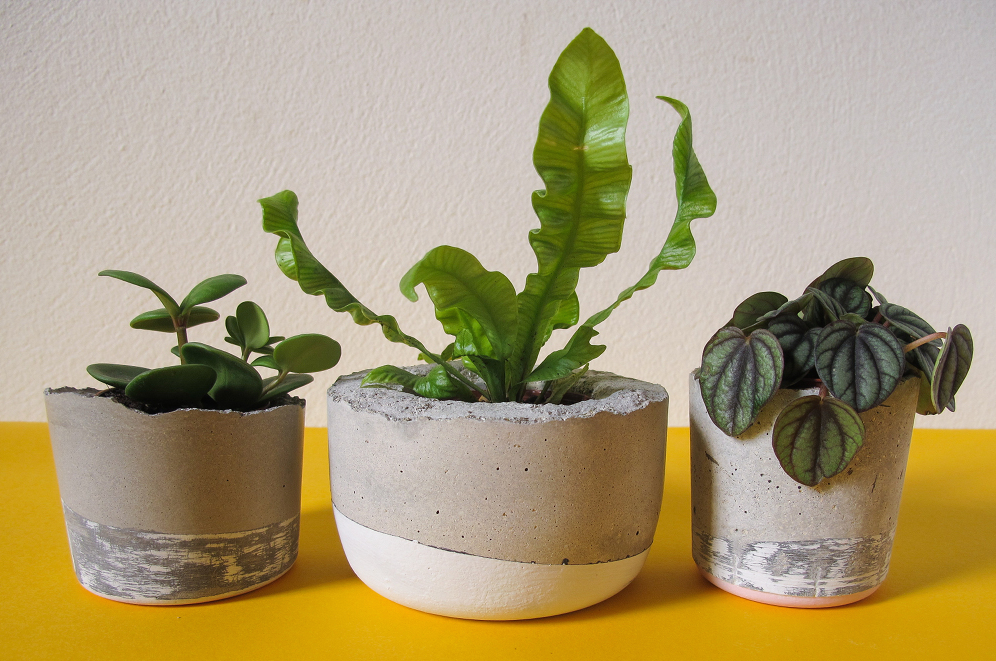 23 Stylish Diy Concrete Planters For Your Home And Landscape