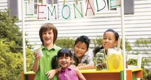 DIY Lemonade Stands