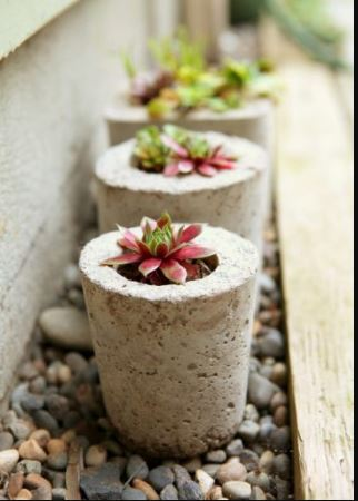 DIY Cement Planters In All Shapes and Sizes