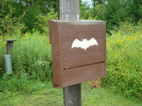 Silhouette Bat Box