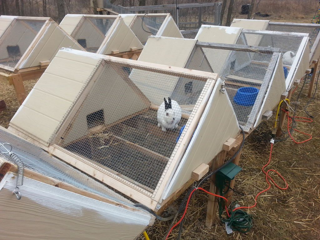 A-Frame Rabbit Cage Plan