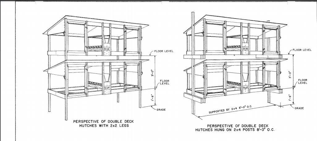 Double Rabbit Hutch Plan PDF
