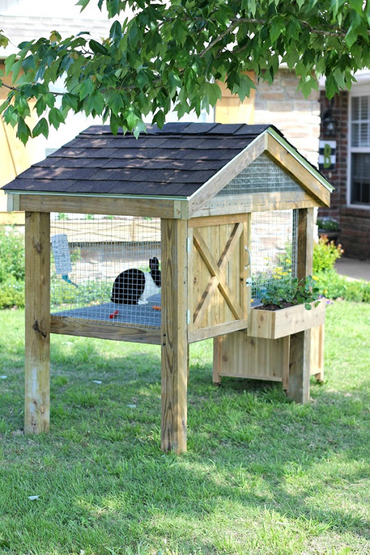 Flower Box Rabbit Hutch Plan