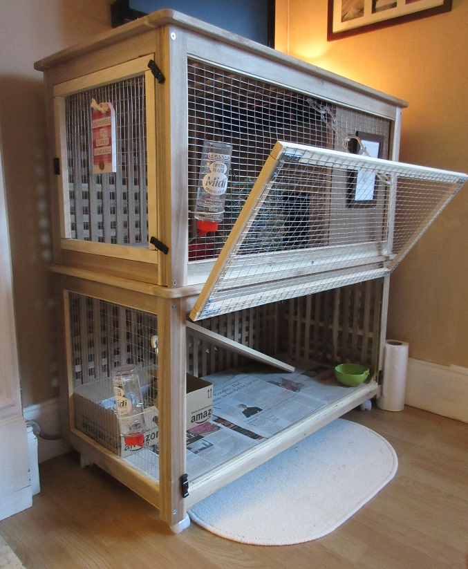 Indoor Rabbit Hutch Plan