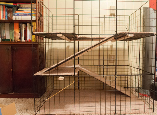 Multi-Level Rabbit Cage