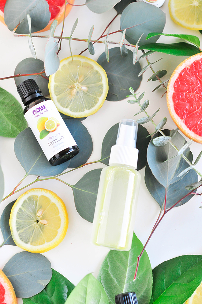 Aloe Vera Homemade Bug Spray