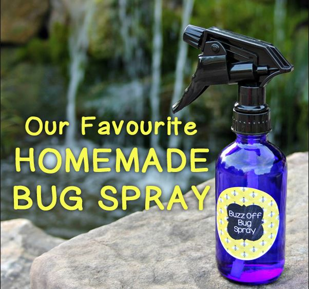 Homemade Bug Spray for Kids