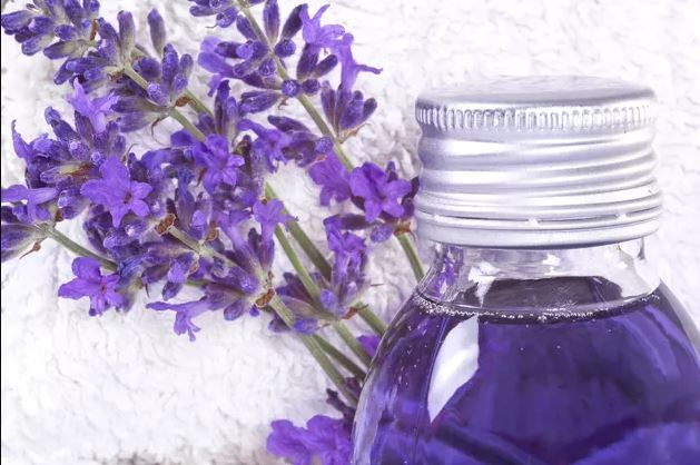 Lavender Oil Homemade Bug Spray