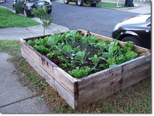 Cheap Raised Garden Bed