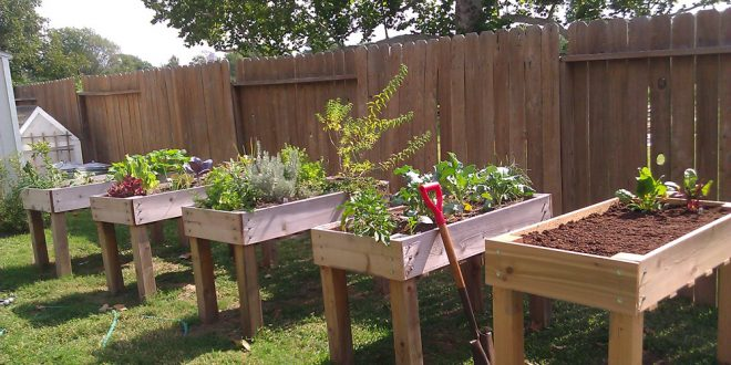 17 Waist High Raised Garden Bed Plans For Easy Gardening The