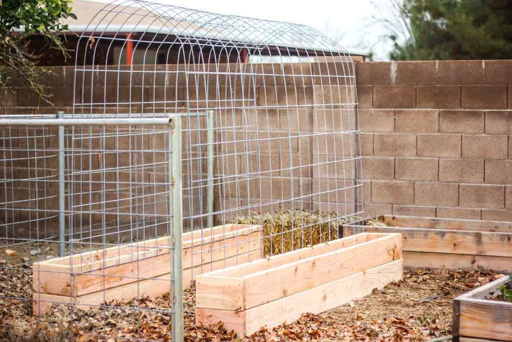DIY Raised Garden Bed With Trellis