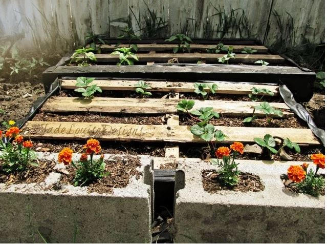 Pallet Raised Garden Bed Plans