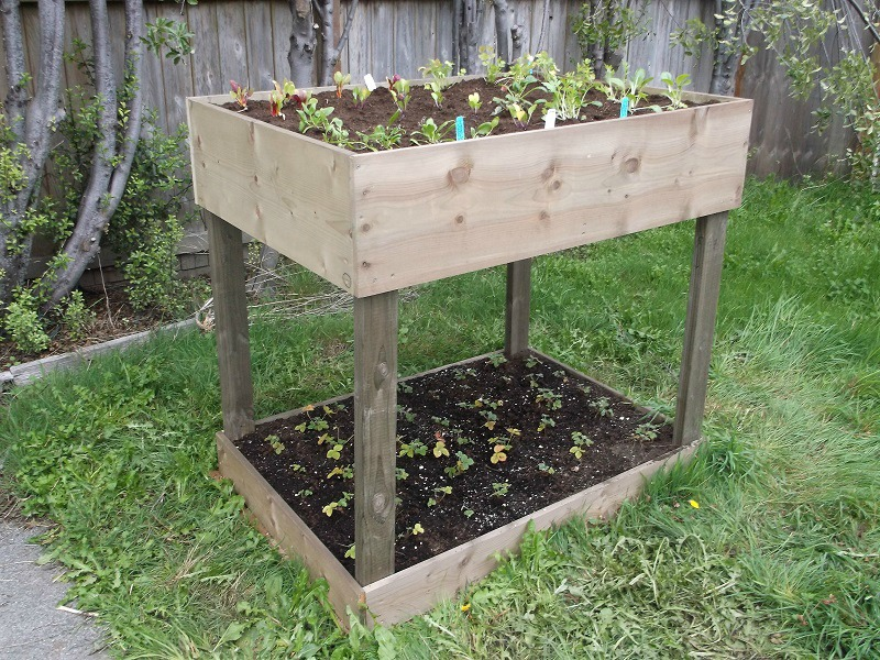 Two-Tiered Raised Garden Bed