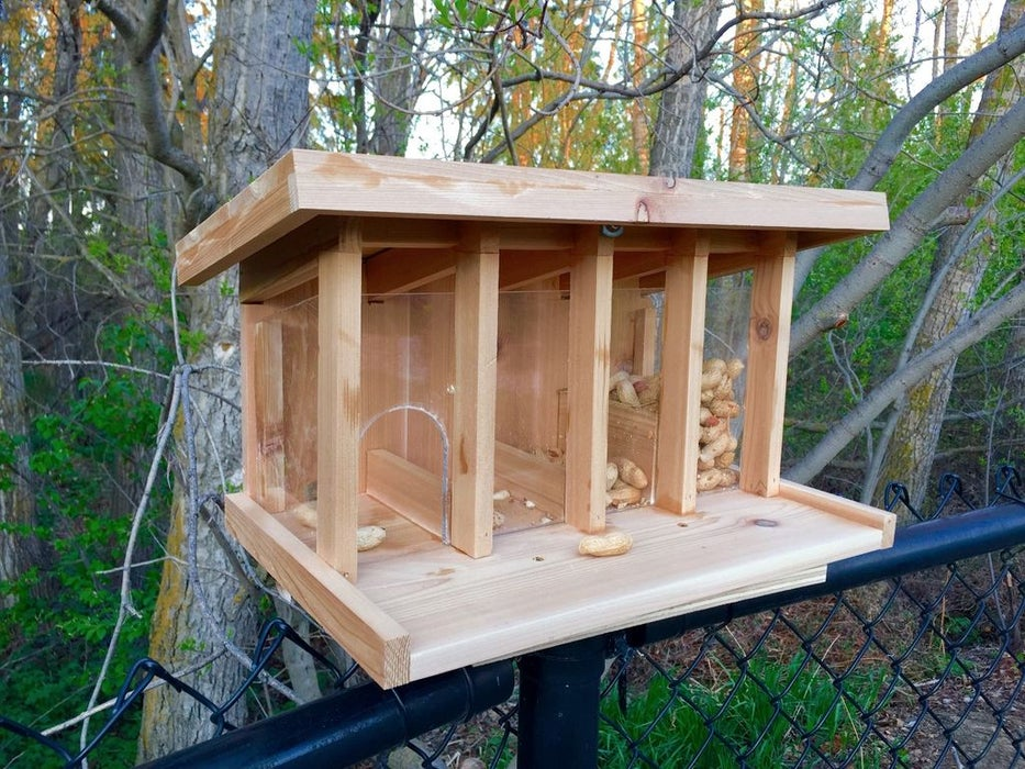 Obstacle Course DIY Squirrel Feeder