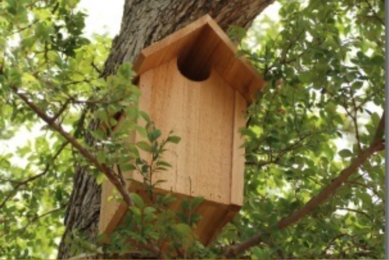how to build anowl house