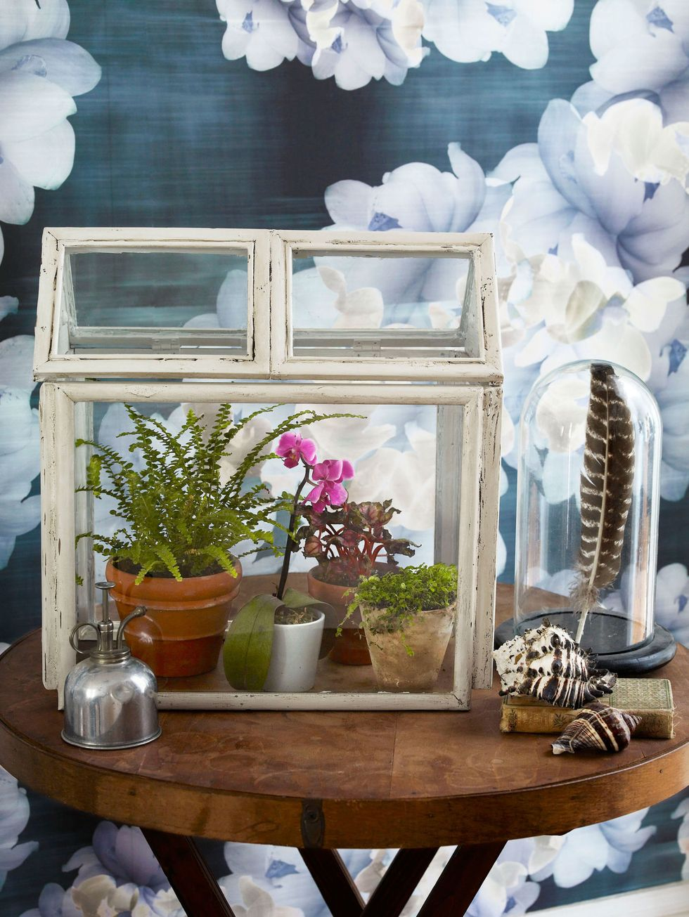 DIY Mini Greenhouse Using Picture Frames