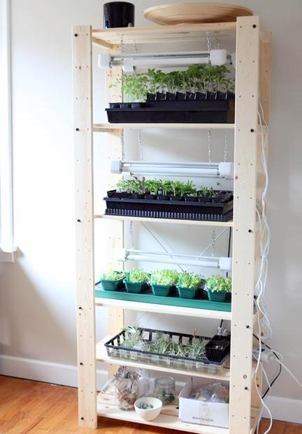 Grow Light Shelf Set Up
