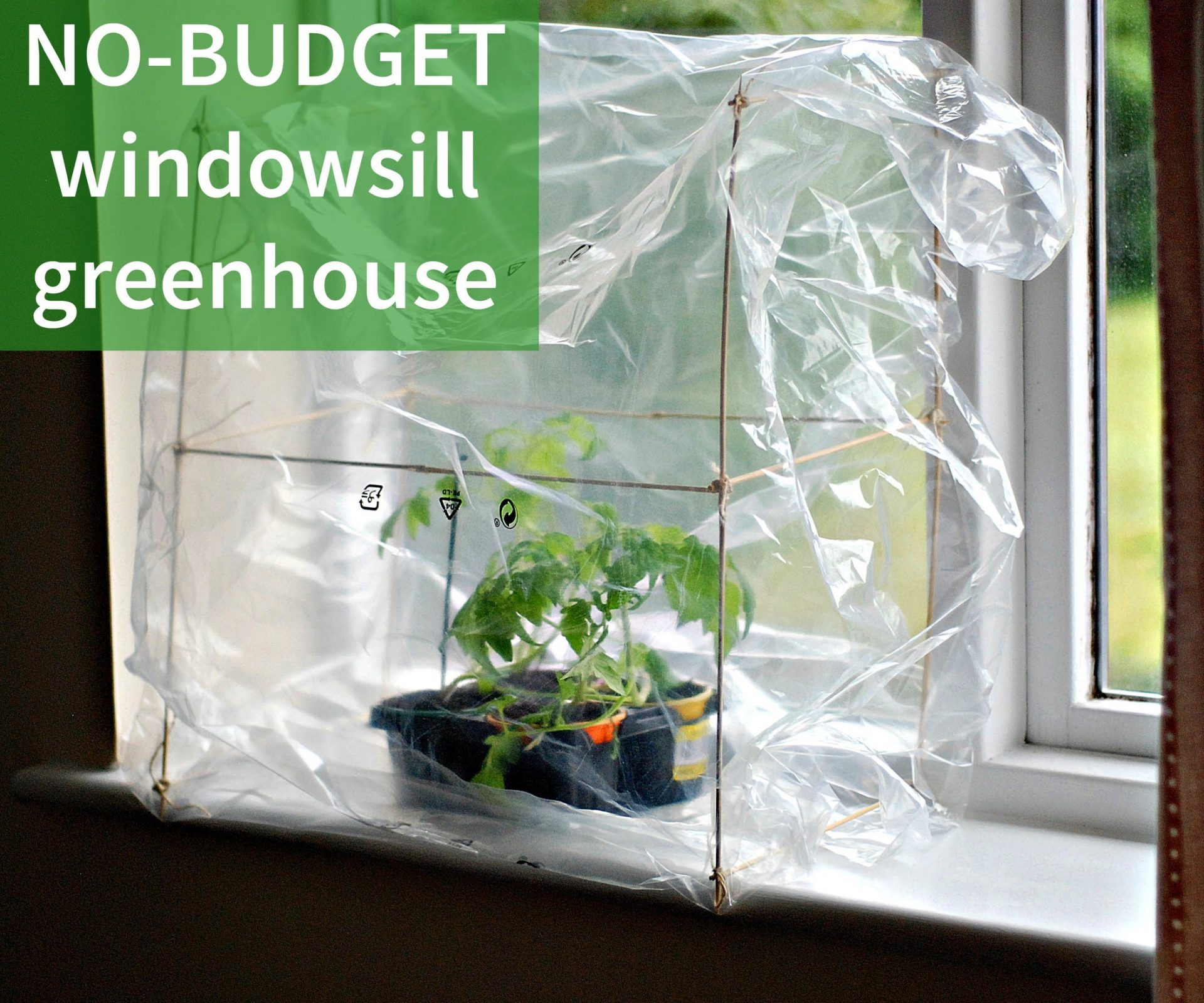 No-Budget Windowsill Greenhouse