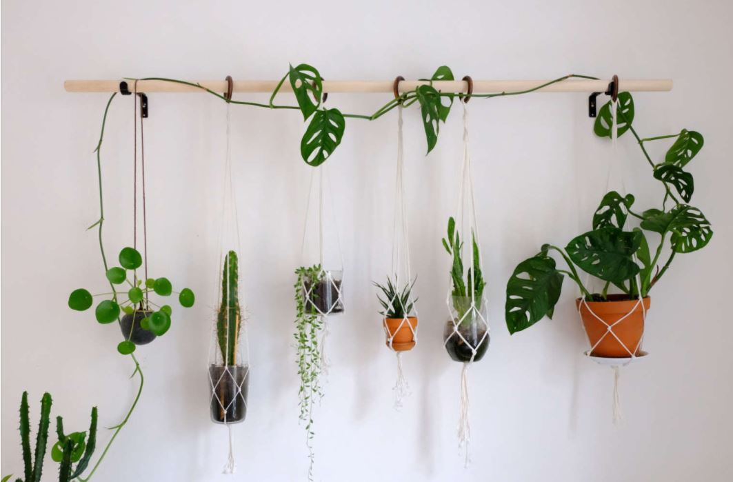 DIY Broomstick or Branch Hanging Plant Wall