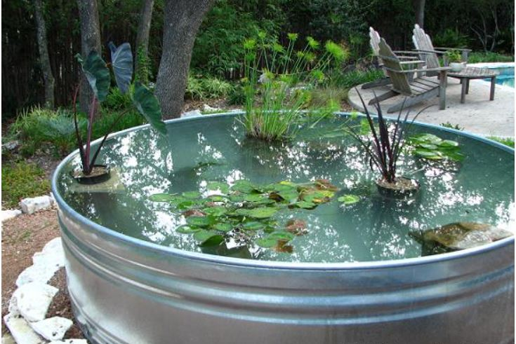 Creating A Stock Tank Pond for the Garden