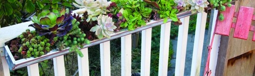 13 Creative and Innovative rain Gutter Garden Ideas