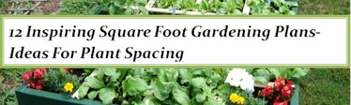 12 Inspiring Square Foot Gardening Plans-Ideas For Plant Spacing