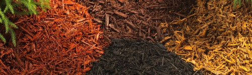 10 Types of Garden Mulch- Choose the Right One for Your Landscape